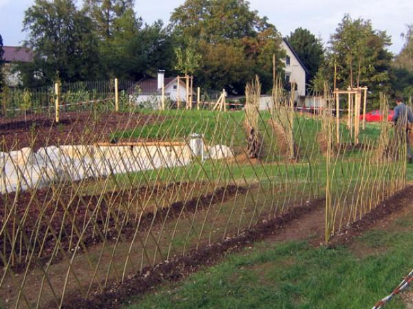 Alternative Zu Zaun Und Hecke